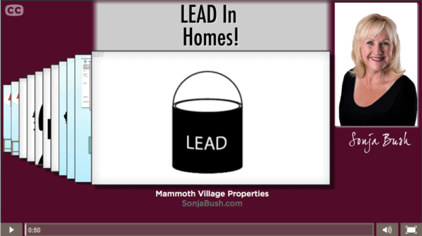 How_Can_I_Protect_My_Family_From_lead_In_The_Home, www.sonjabush.com, Mammoth Lakes